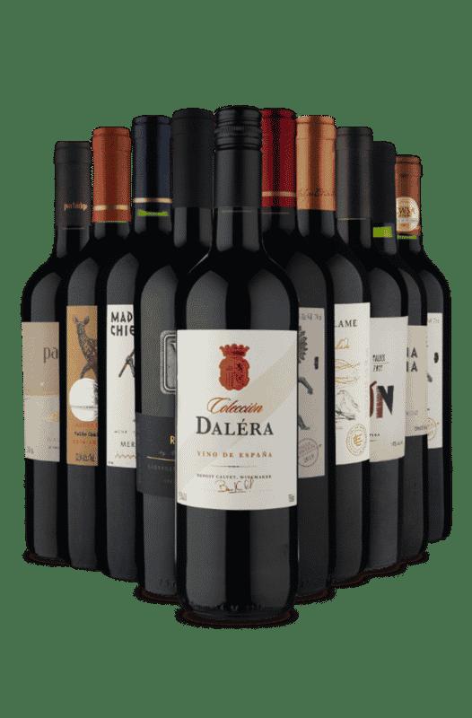 Kit Diversos Tintos (10 vinhos)