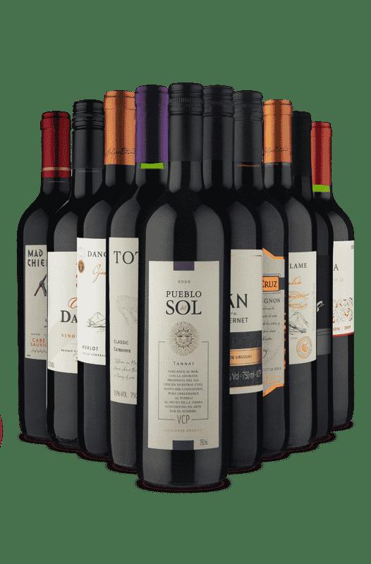 Kit Vou de Tinto (10 Vinhos)