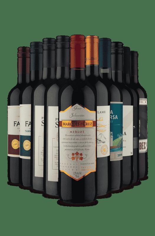 Kit Especial Relâmpago (10 Vinhos)
