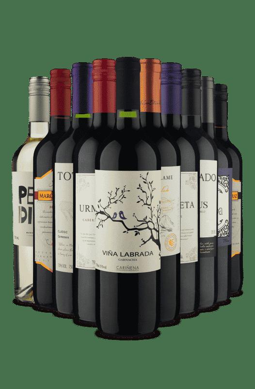 Kit Seleção do Sommelier (10 Vinhos)