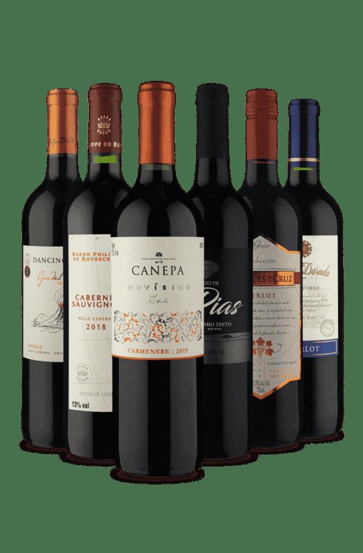 Kit Diversos Tintos (6 Vinhos)