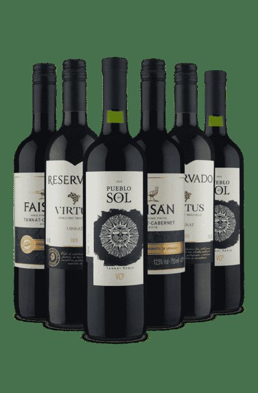 Kit Tannat ao Contrário é Tannat (6 Vinhos)