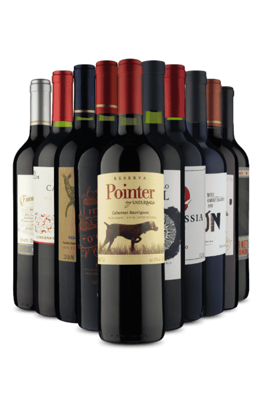 Kit América do Sul em Tintos (10 Vinhos)