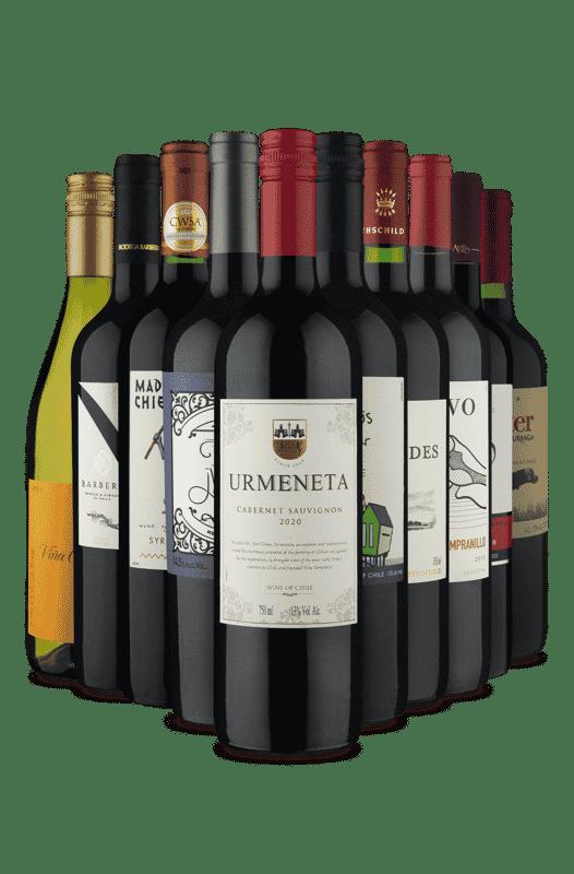 Kit Sabores da America do Sul (10 Vinhos)