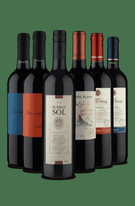 Kit Vinhos Selecionados pra você (6 Vinhos)