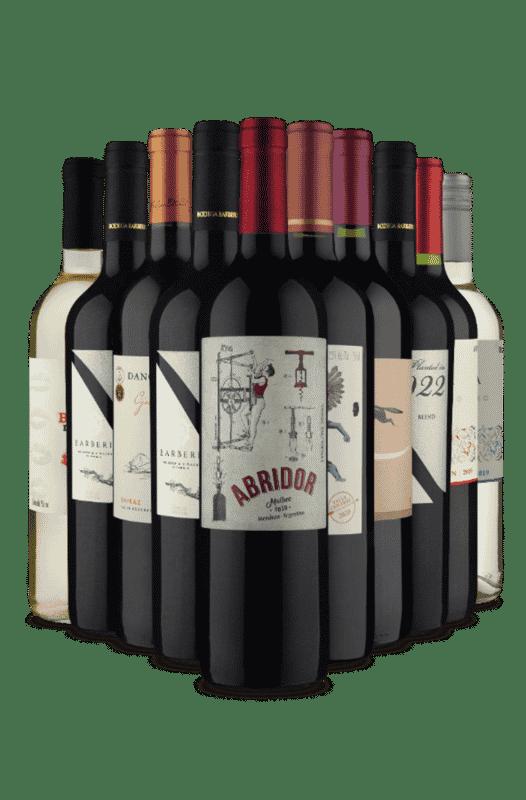 Kit de Boas Vindas Vinho Fácil (10 Vinhos)