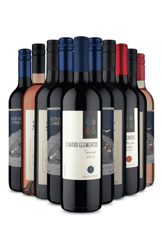 Kit do Dia Promo Turbinada (10 Vinhos)