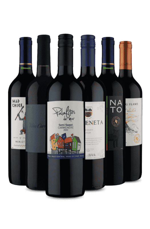 Kit Tintos do Chile (6 Vinhos)