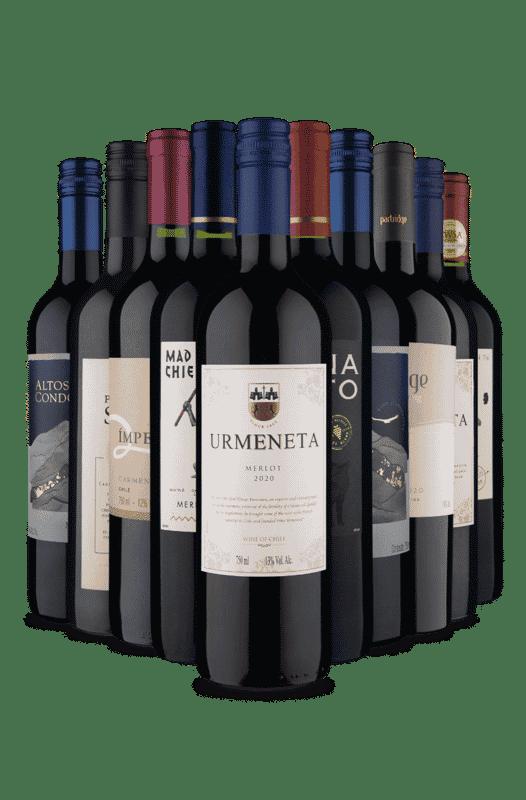 Kit Uvas Marcantes (10 Vinhos)