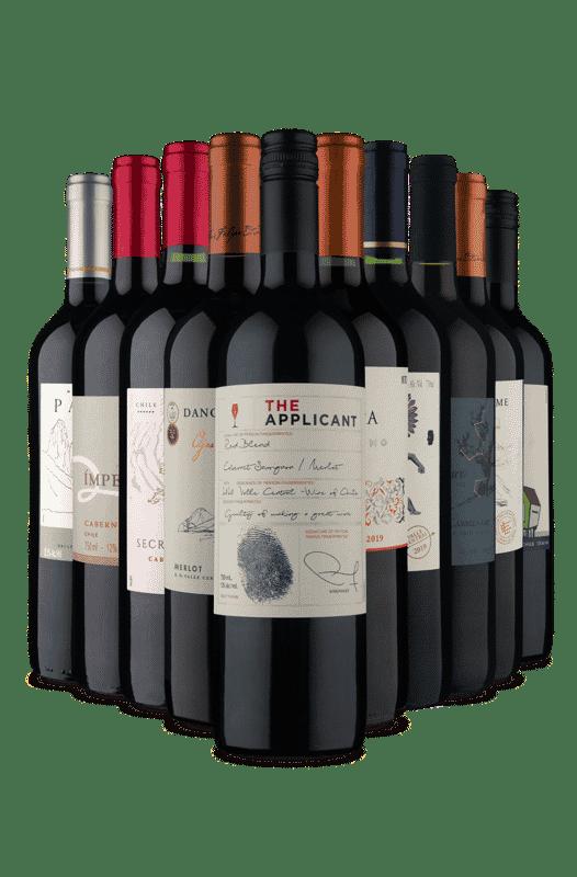 Kit Seleção Tintos Chilenos (10 Vinhos)