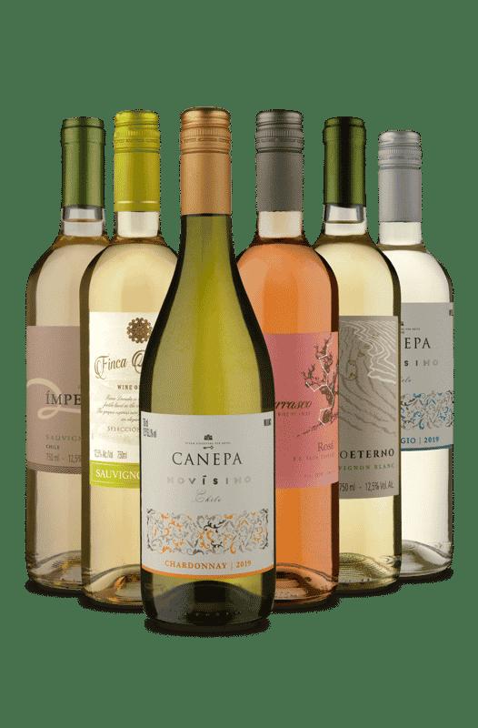 Kit Refrescantes Chilenos (6 Vinhos)