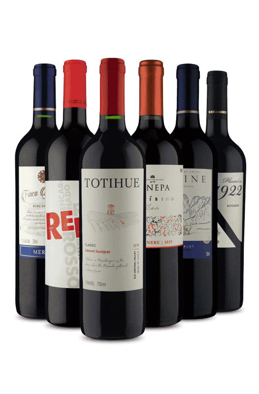 Kit 6 Tintos Consagrados (6 Vinhos)
