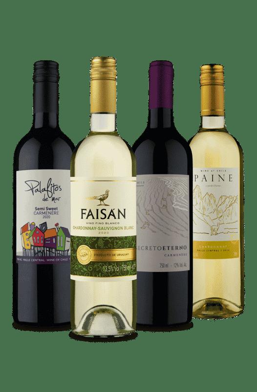 Kit 1 Uruguaio 3 Chilenos (4 Vinhos)