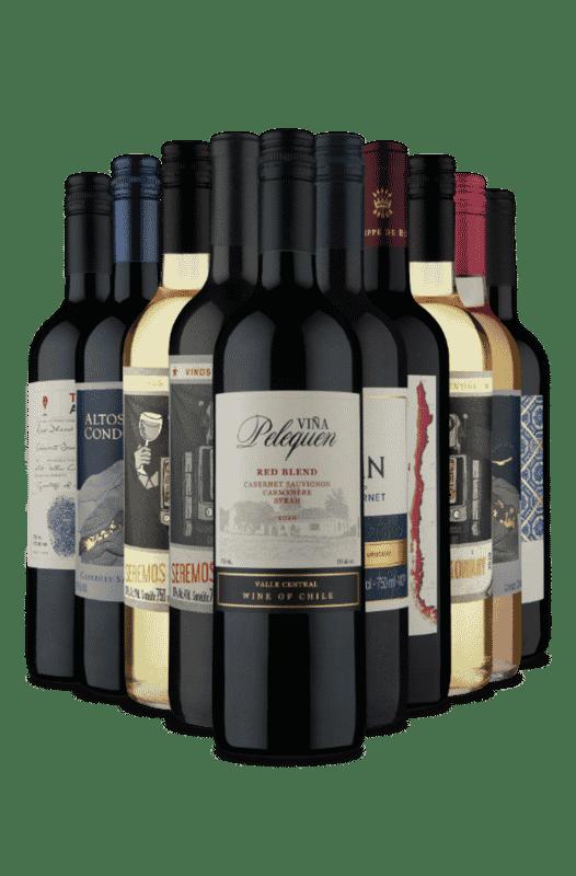 Kit Campeões de Venda Vinho Fácil (10 Vinhos)