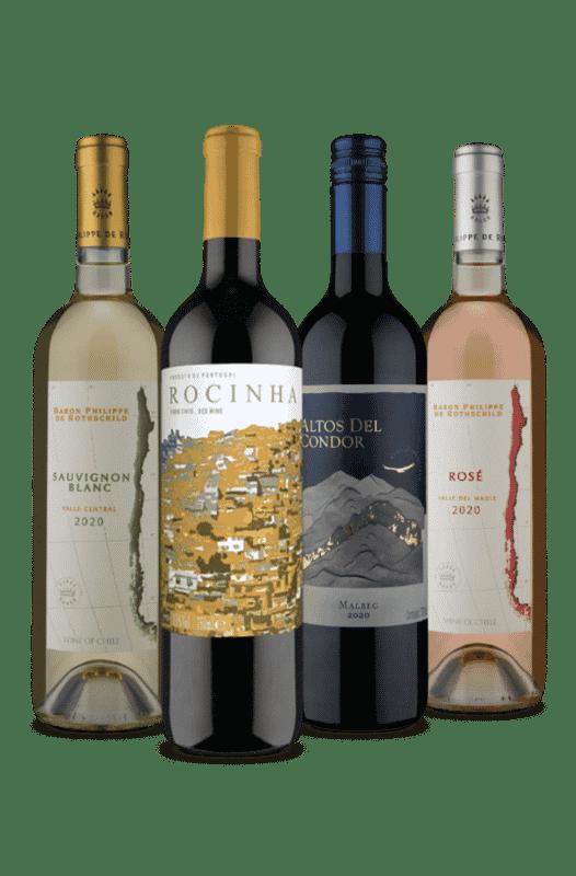 Kit 1 Meio Seco 3 Secos (4 Vinhos)