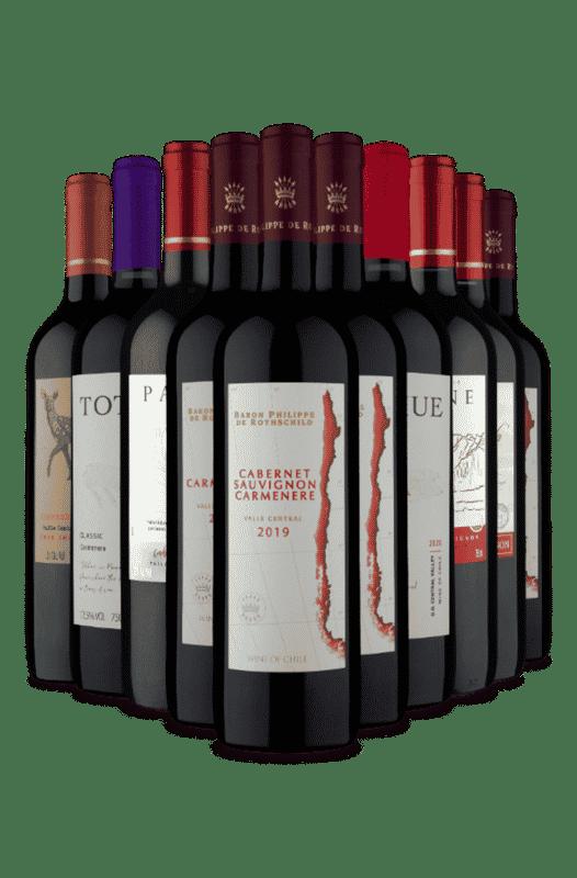 Kit Seleção Vinhos Tintos Chilenos (10 Vinhos)