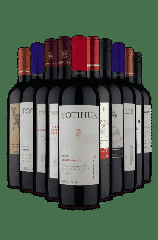 Kit Vinhos Tintos Chilenos (10 Vinhos)
