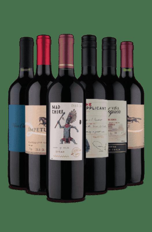 Kit Vinhos Tintos Chilenos (6 Vinhos)