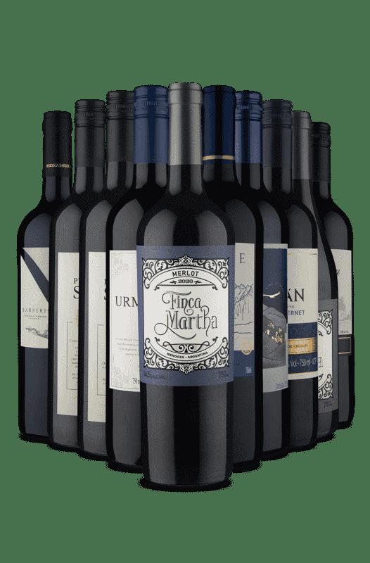 Kit Vinhos Sul-Americanos para o Inverno (10 Vinhos)