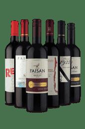 Kit Tintos que Alegram (6 Vinhos)