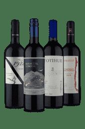 Kit Quarteto Chile + Argentina (4 Vinhos)