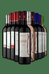 Kit 3 famílias Chilenas (10 Vinhos)