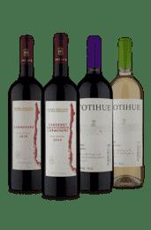 Kit Quarteto Vinhos Chilenos (4 Vinhos)