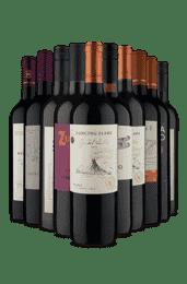 Kit Tintos selecionados pra Você (10 Vinhos)