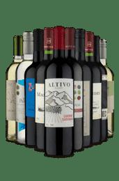 Kit Um Europeu na América do Sul (10 Vinhos)