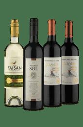 Kit Vinhos Selecionados Vinho Fácil (4 Vinhos)