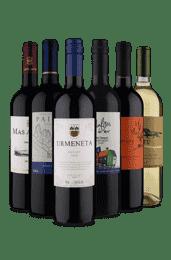 Kit Viajando para o Chile (6 vinhos)