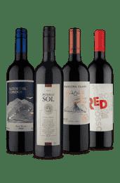Kit 4 Tintos Português na América do Sul (4 Vinhos)