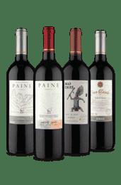 Kit 4 Tintos Chilenos Uva Syrah (4 Vinhos)