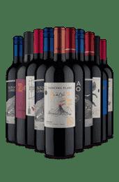 Kit 10 Tintos Surreais (10 Vinhos)