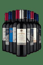 Kit 10 Tintos Beirando a Loucura (10 Vinhos)