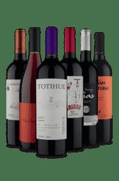 Kit 6 Tintos Orgulho Vinho Fácil (6 Vinhos)