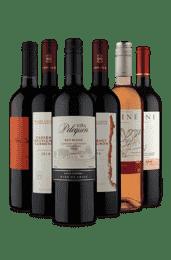 Kit 6 Cabernet Baron, Paine e Viña (6 Vinhos)