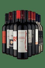 Kit 10 Variedade e Qualidade (10 Vinhos)
