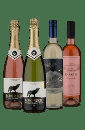 Kit 4 Tipos Diferentes Refrescantes (4 Vinhos)