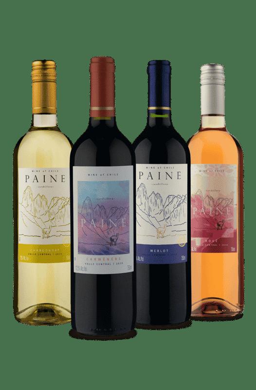 Kit Familia Paine (4 Vinhos)