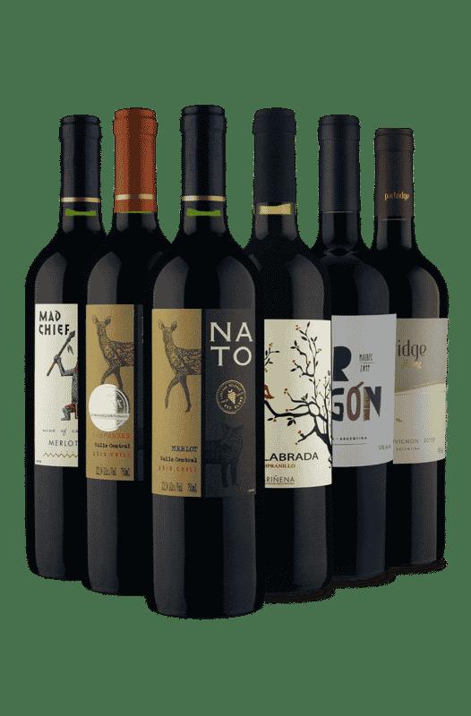 Kit Tintos Mais Procurados (6 vinhos)