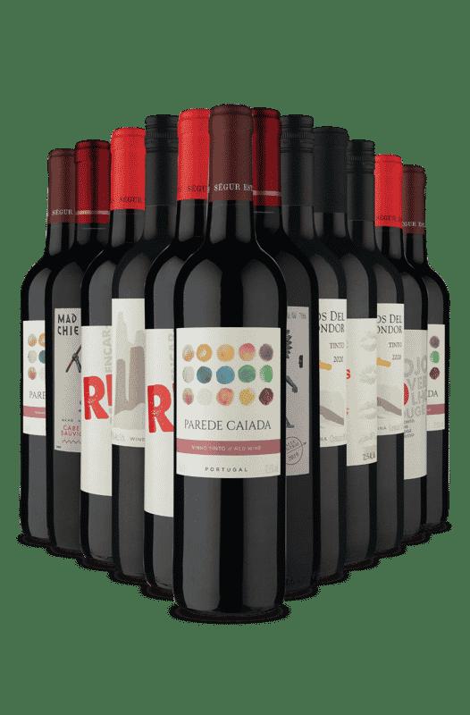 Kit Seleção Diferentes Tintos (12 Vinhos)