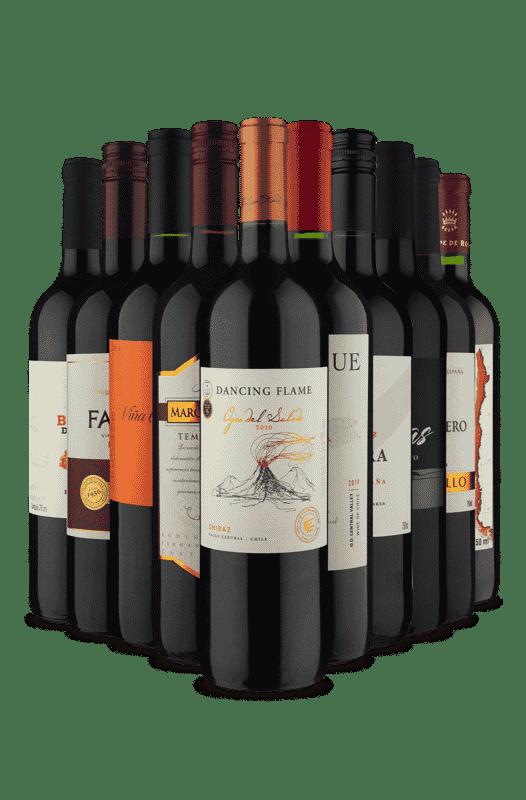 Kit Melhor Oferta de Tintos (10 Vinhos)