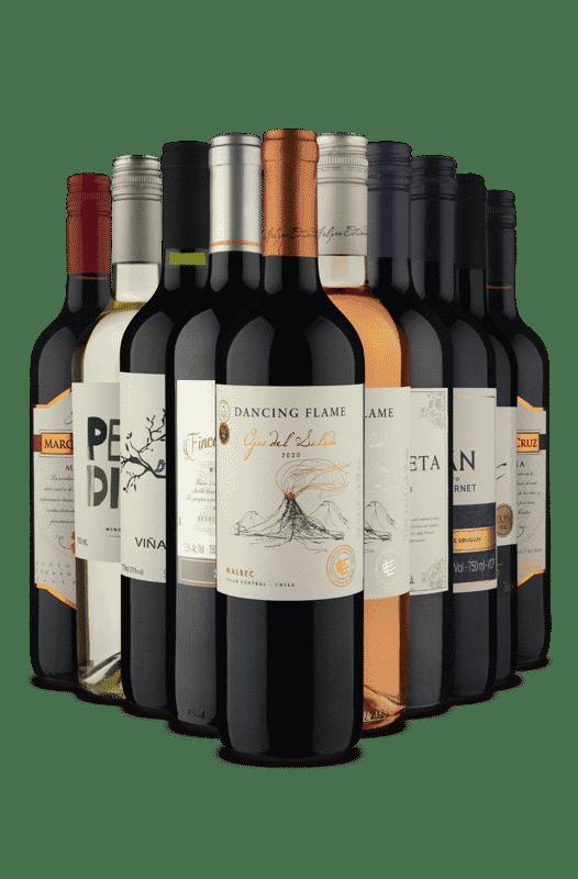 Kit Vinhos Misturados (10 Vinhos)