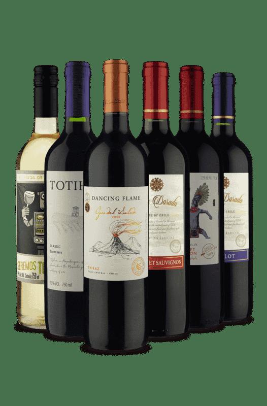 Kit Diversidade de Sabores (6 Vinhos)