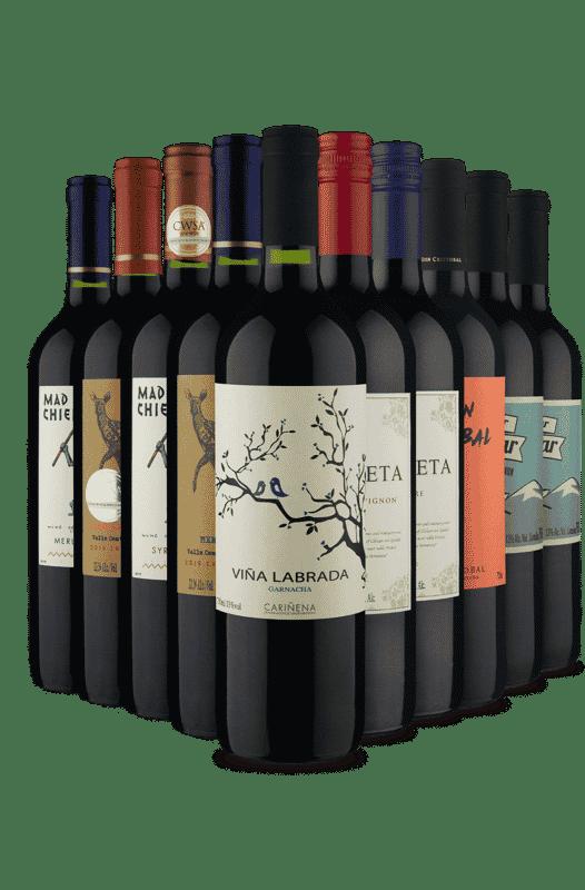 Kit Especial Tintos Vinho Fácil (10 Vinhos)