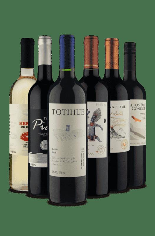 Kit Sabores Inconfundíveis (6 Vinhos)