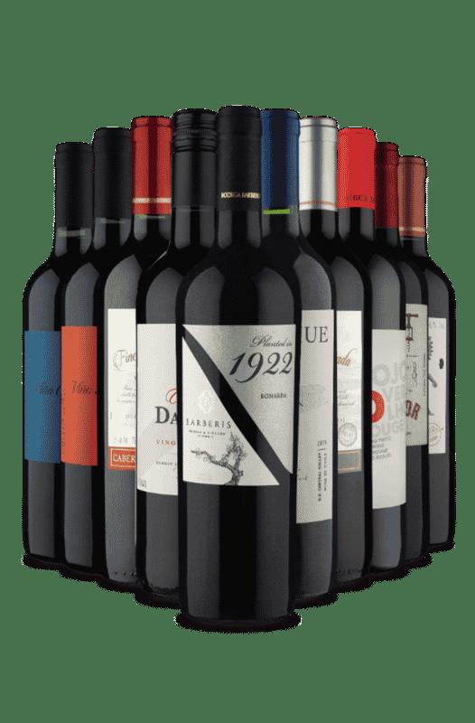 Kit Tintos de Encantar (10 Vinhos)