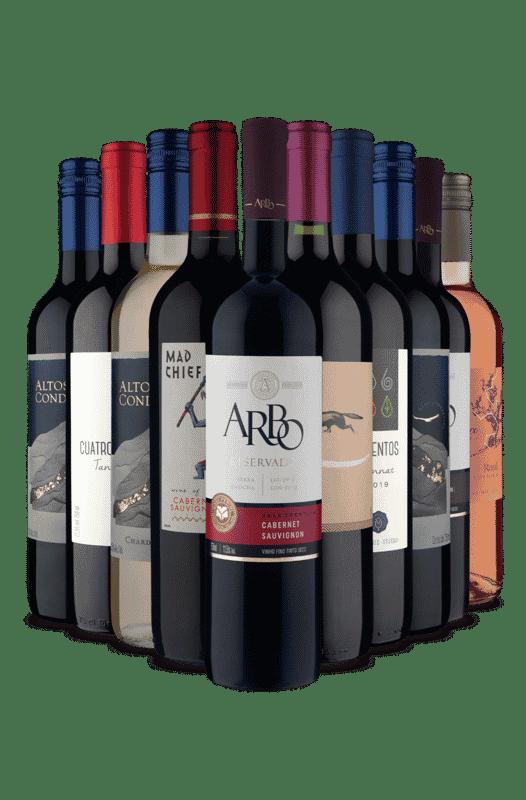 Kit Só America do Sul (10 Vinhos)