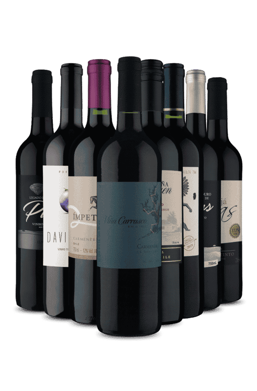 Kit Chile e Portugal (8 Vinhos)